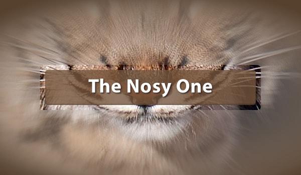The Nosy One