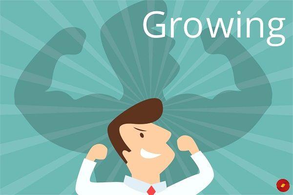 Growing ECommerce