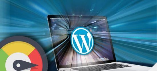Wordpress Development Specialist