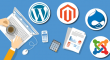 Know About the Top 4 CMS Tools for Web Development