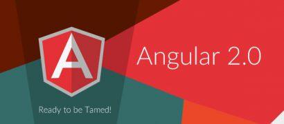 AngularJS Experts