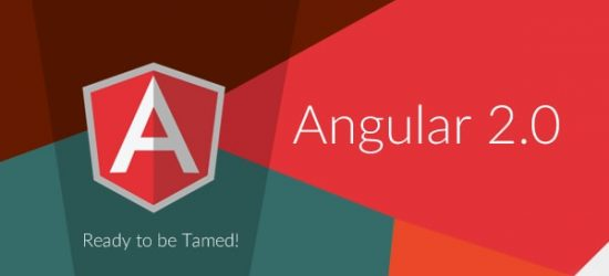 AngularJS Experts