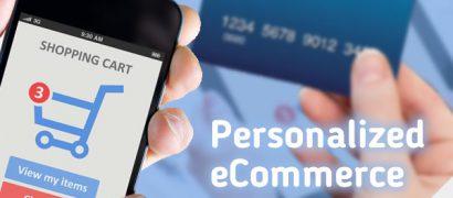 E-commerce Development Specialist