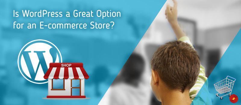 WordPress-E-commerce-Development-Agency