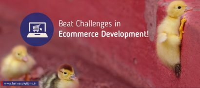 Ecommerce Website Development Agency