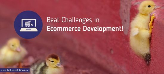 Ecommerce Website Development Agency