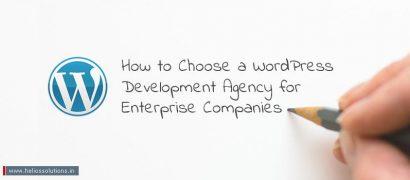 How to Choose a WordPress Development Agency for Enterprise Companies