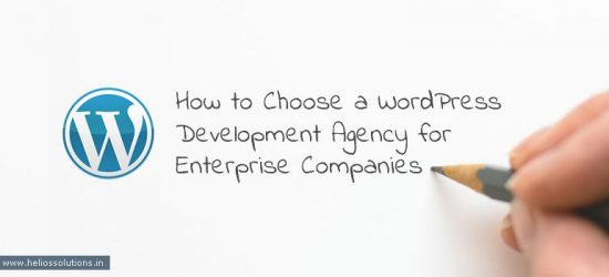How to Choose a WordPress Development Agency for Enterprise Companies