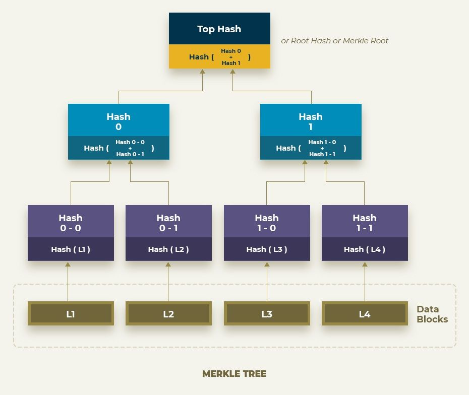 concept of Merkle Tree